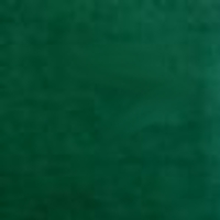 Photo of Bottle Green fleece fabric
